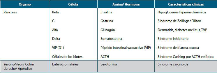 diabetes endocrinológica mfa